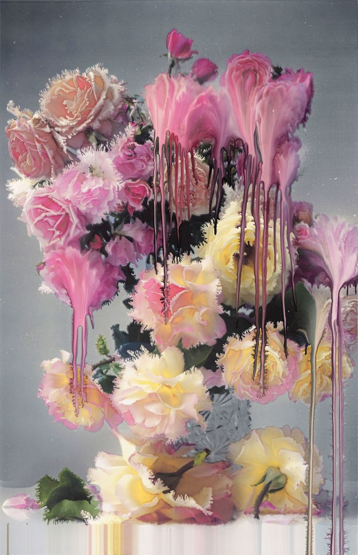 Nick Knight, Pale Rose