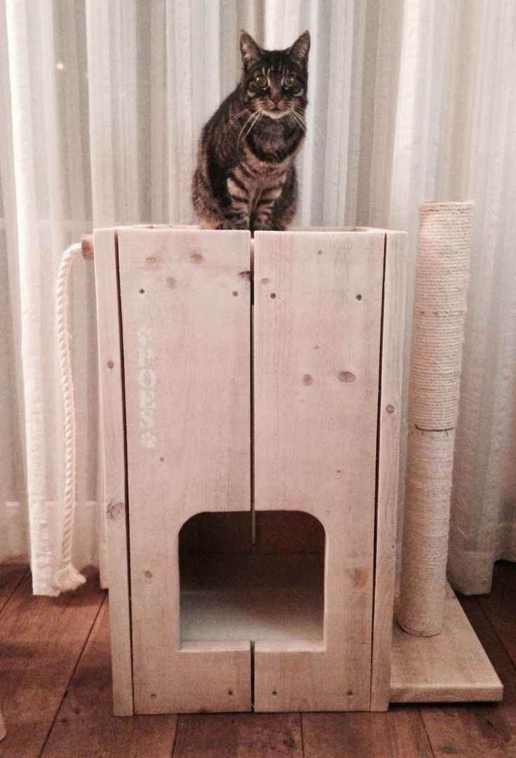 Homemade kattenhuis/krab paal