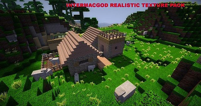 http://www.img3.9minecraft.net/TexturePack/Intermacgod-realistic-texture-pack.jpg