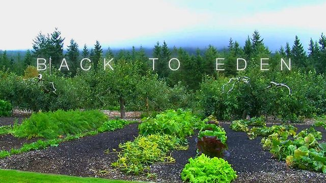 77 best images about backtoedenfilm edible landscaping - Where is the garden of eden today ...