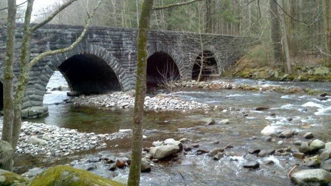 17 best images about elkmont on pinterest tennessee for Fishing in gatlinburg tn