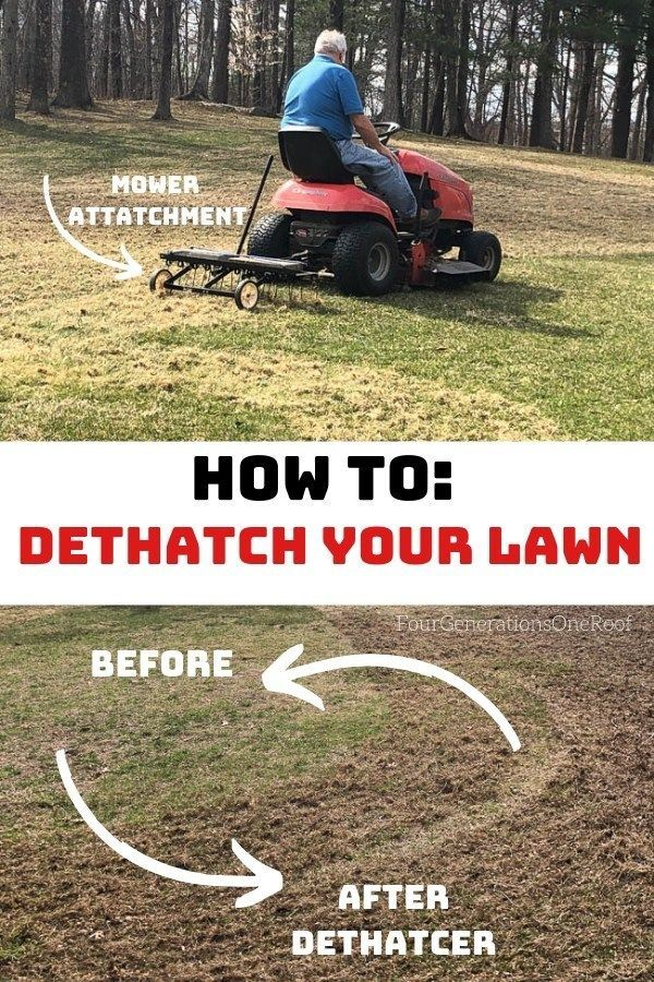 Dad S Lawn Dethatcher Tips And Tricks Best Lawn Series 1