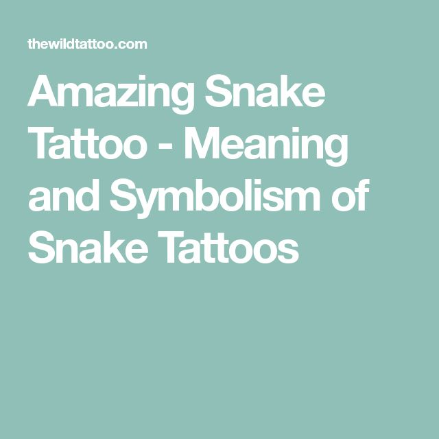 Amazing Snake Tattoo - Meaning and Symbolism of Snake Tattoos