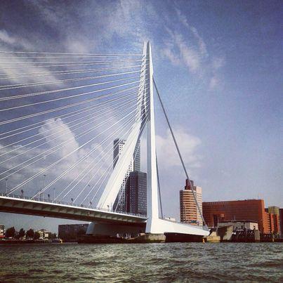 De Erasmusbrug: verbinding naar Rotterdam Zuid.