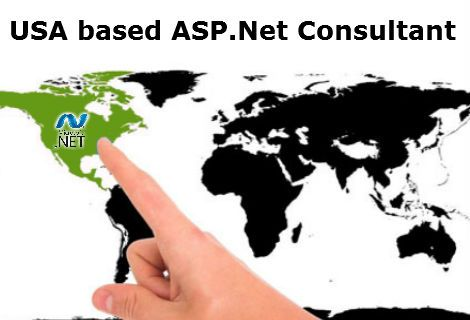 USA based asp.net consultants are one of the most sought development services providers in the IT sector today. They are required for accomplishment of several objectives such as business requirement analysis, database reviews, software architecture analysis, architecture consulting and training, etc.