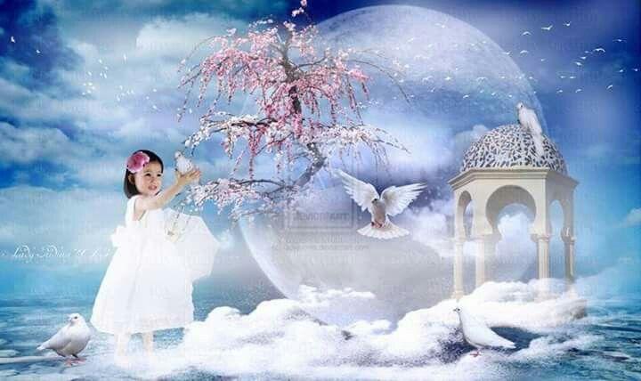 Meisje met kersenbloesem en prieel