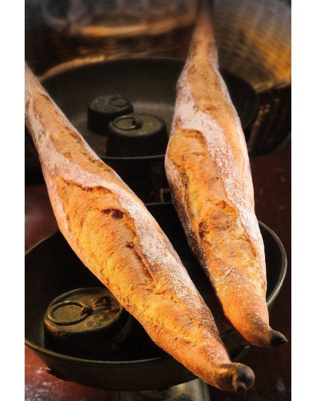 Book Panadería Artesana, Tecnología Y Producción por Xavier Barriga|Librería Gastronómica