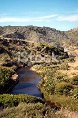 Riverscape, Kahurangi National Park, Golden Bay, NZ Royalty Free Stock Photo