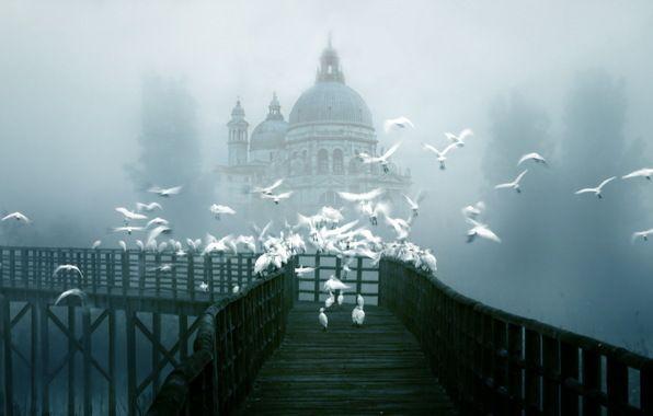 Venice in the fog