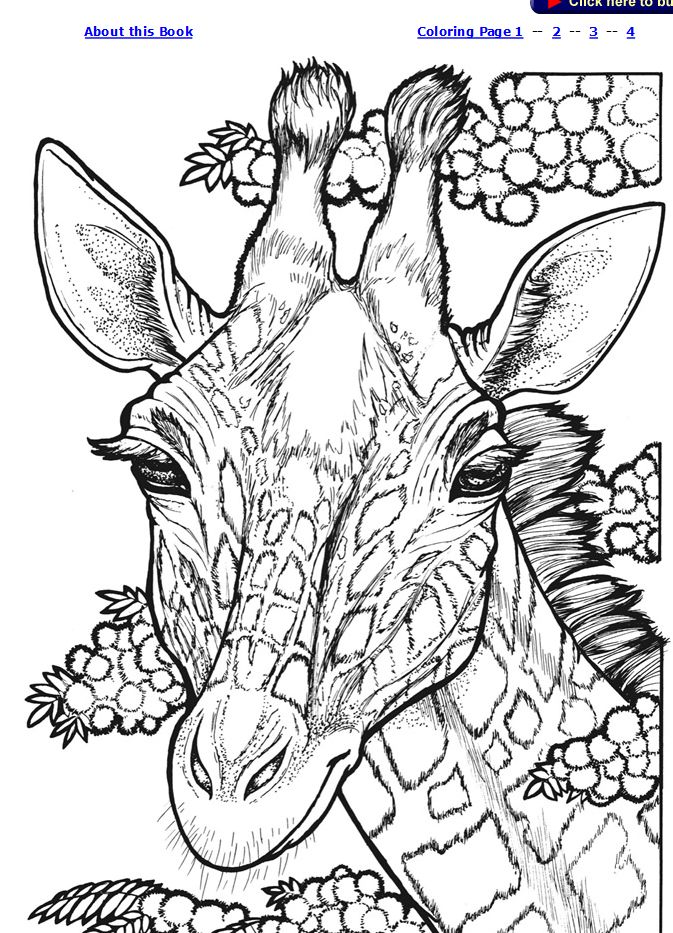 1207 best Coloring Book images on Pinterest Coloring books - best of free coloring pages of rappers