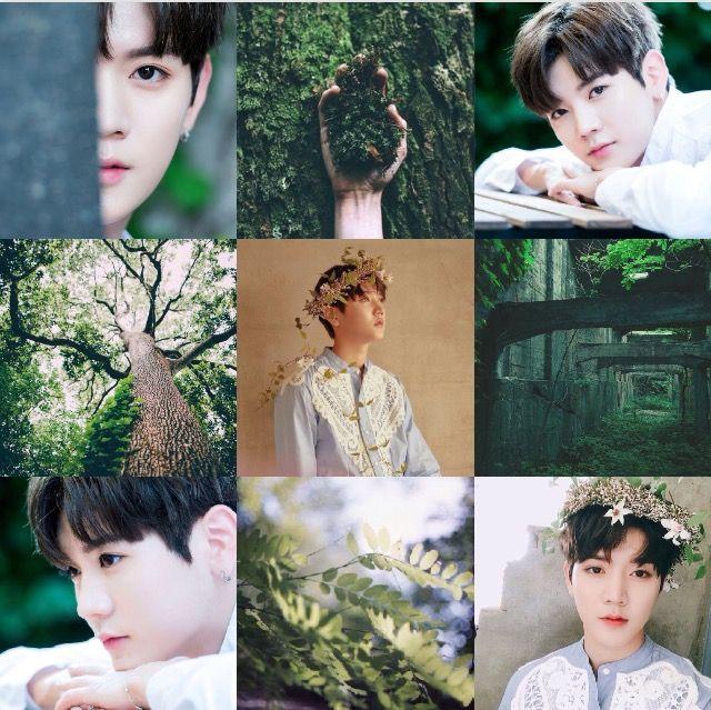 Nu'est Ren // kpop aesthetic // green // nature