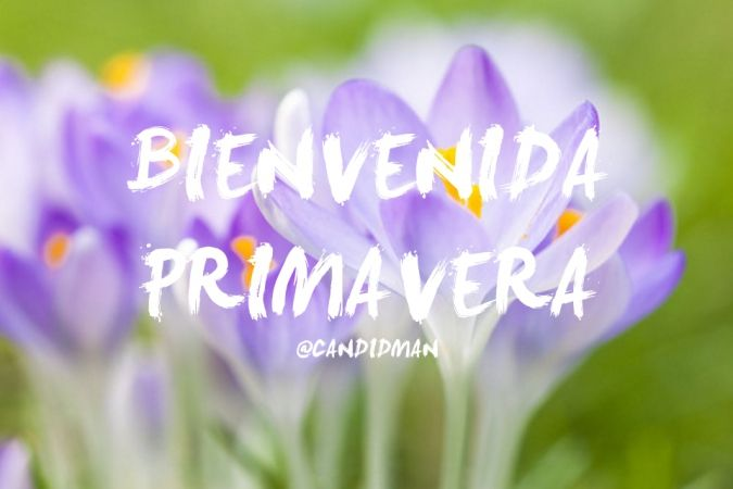 """Bienvenida #Primavera"". @candidman #Frases #Motivacion"
