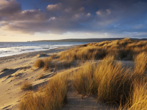 Windswept Sand Dunes on Beach at Studland Bay, UNESCO World Heritage Site, Dorset, England:
