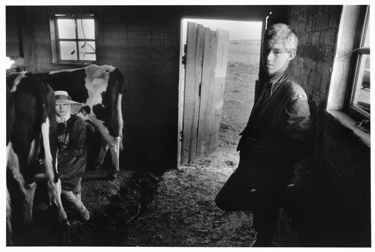 Larry Towell MEXICO. 1991. Chihuahua. Cuervo Casas Grandes Colonies. Mennonites.