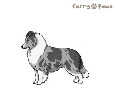 Furry Paws // UCFl Kip's Already Faded [1.592] 12.6's Kennel