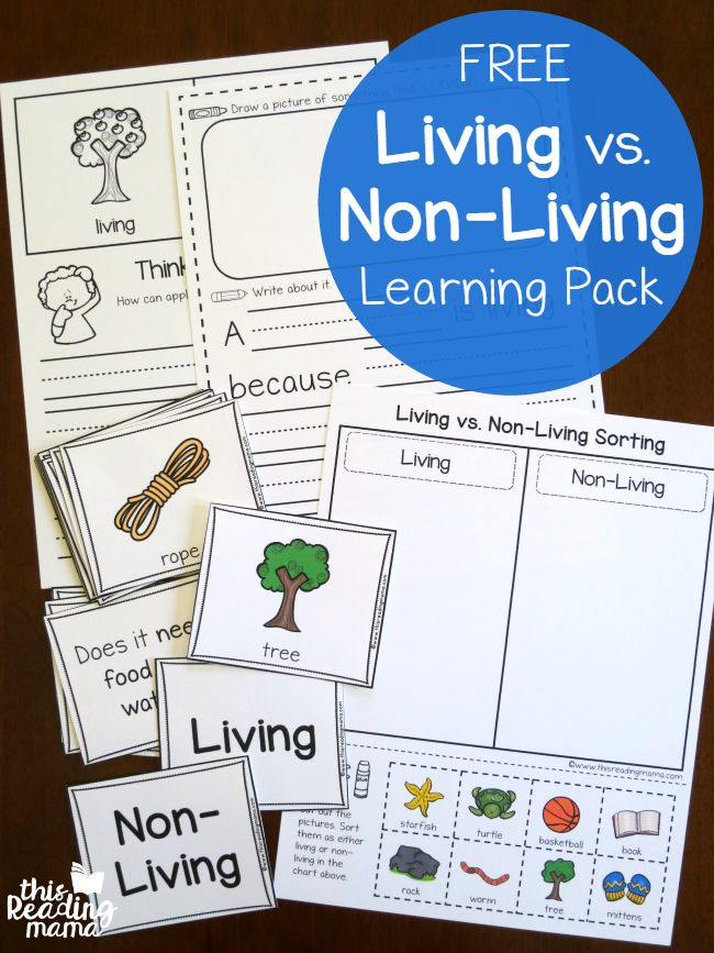 Before divinginto a plants unit or animals unit, I think it's good to spend a little time exploring living vs. non-living. This helps learners have a clear understanding of how living things work. And that's exactly what this free living vs non-living learning pack can help you do. By the way, you may also like …