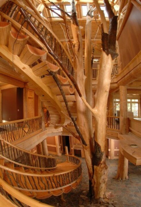 Gorgeous cool tree house interior tree houses pinterest for Awesome home interiors