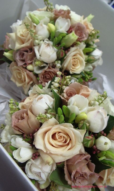 BG145 Antique champagne ` Sahara` roses, latte `Julia` roses, white David Austin roses, white freesias, Geraldton bud wax, pieris