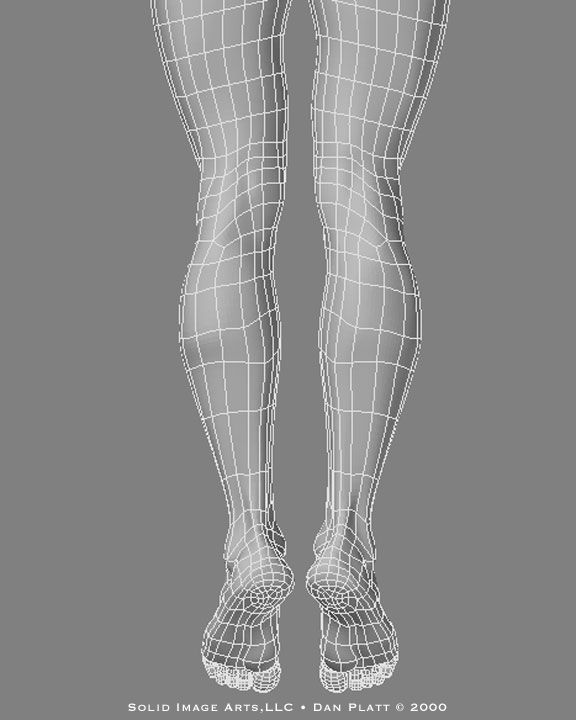 Wireframe legs from the back