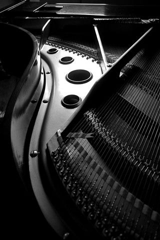 ♫♪ Music ♪♫ Black & white music instrument - piano