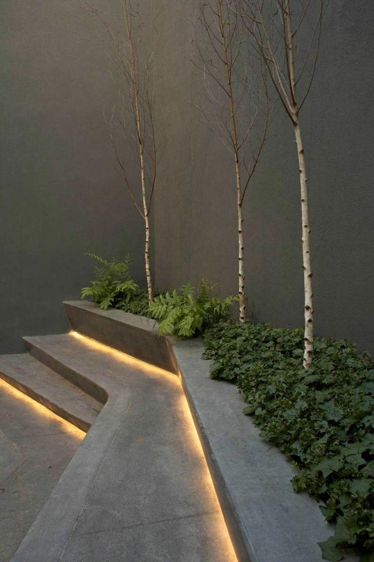 éclairage extérieur en bande lumineuse LED, bouleaux et fougère