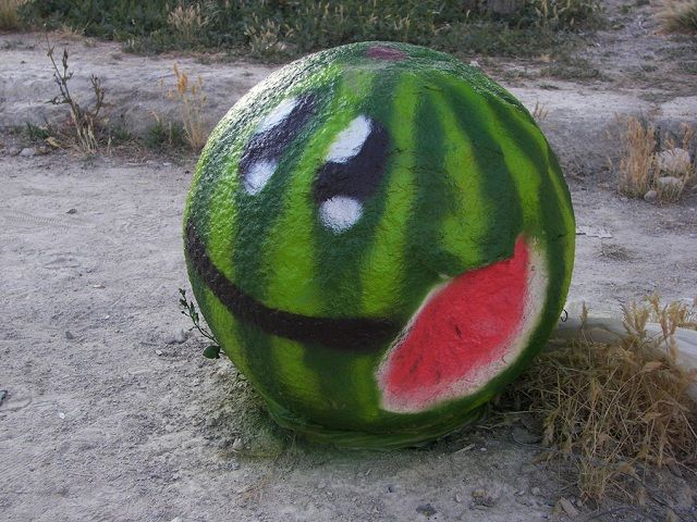 pao watermelon