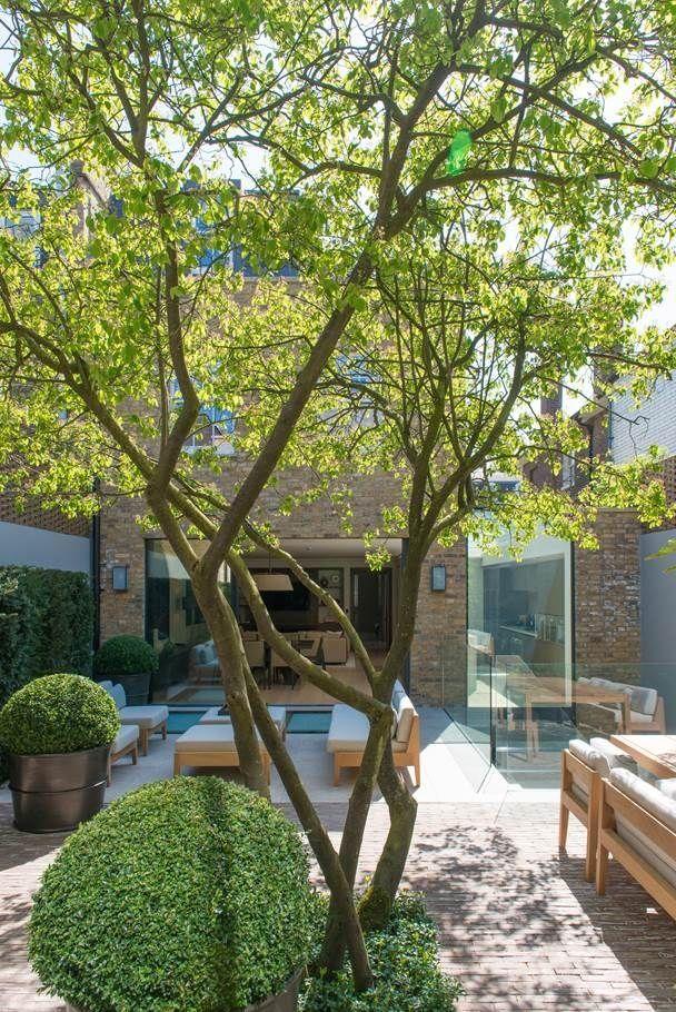 Restrained Contemporary And Elegant Garden Notting Hill London Uk Modern Design Backyard Garden Layout Bedford Gardens Modern Garden
