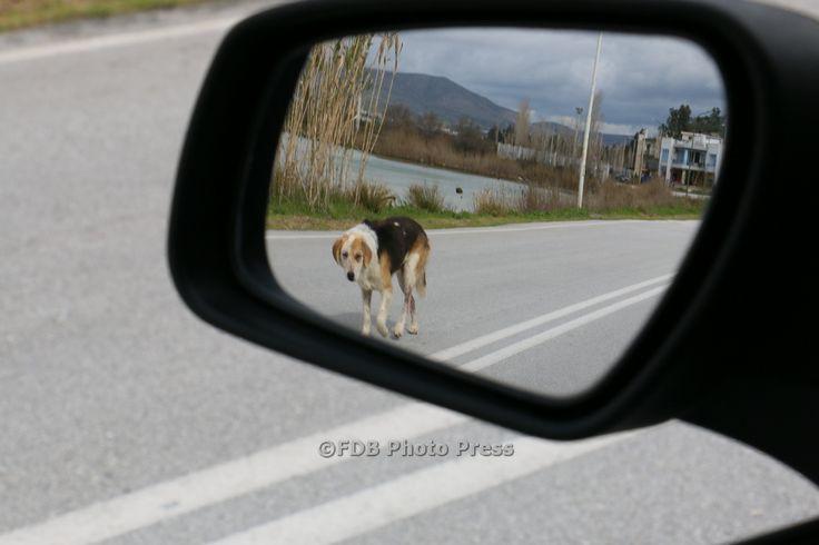 H ΦΩΤΟΓΡΑΦΙΑ ΤΗΣ ΗΜΕΡΑΣ