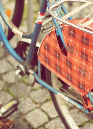vintage bike with a plaid bicycle skirt guard