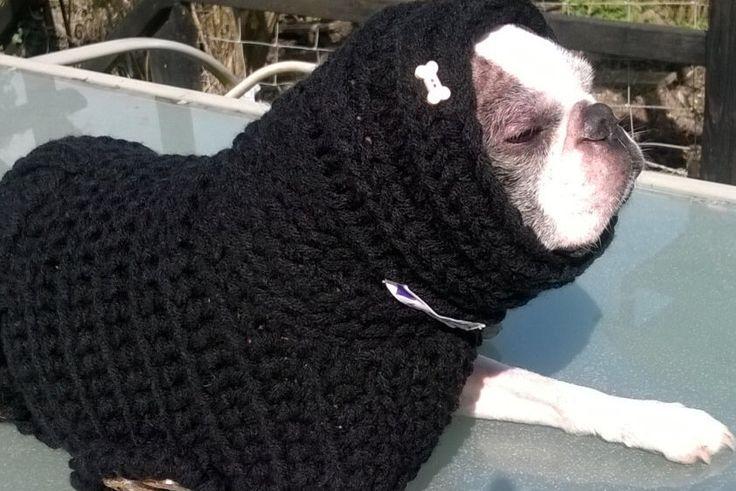 Dog Snood, Dog Cowl, Dog Hoodie, Dog Accessories, Dog Scarf, Pet Clothing, Small Dog Clothes, Dog Fashion, Dog Clothes, Pet Accessories by RockingPony on Etsy https://www.etsy.com/listing/228755663/dog-snood-dog-cowl-dog-hoodie-dog