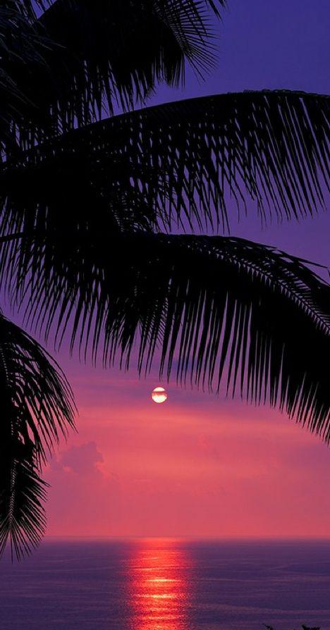 tropical sunset at Kealakekua Bay on the Kona coast of Hawaii • photo: Pete Orelup on Flickr