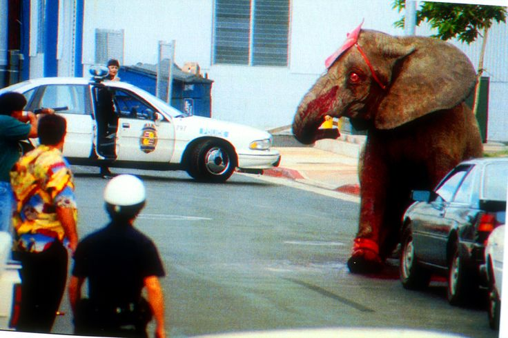 Tyke the Elephant's Last Day on Earth (VIDEO) | Features | PETA. This is sad. Don't support circuses who have animals. They abuse the animals.