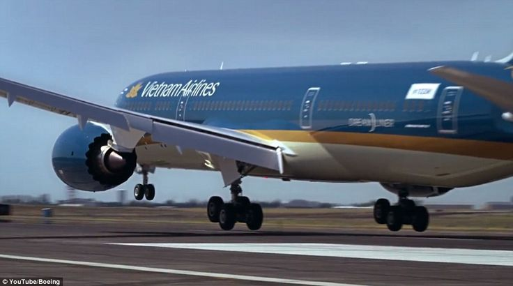 The passenger jet has been purchased by Vietnam Airline, pictured, who will be accepting d...