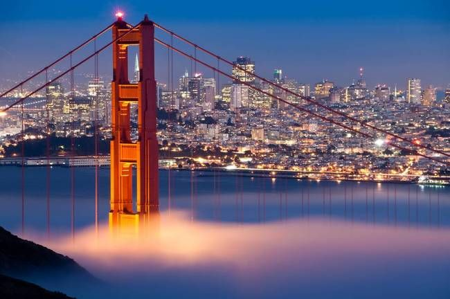 54 best art san francisco ca images on pinterest for Buy art san francisco