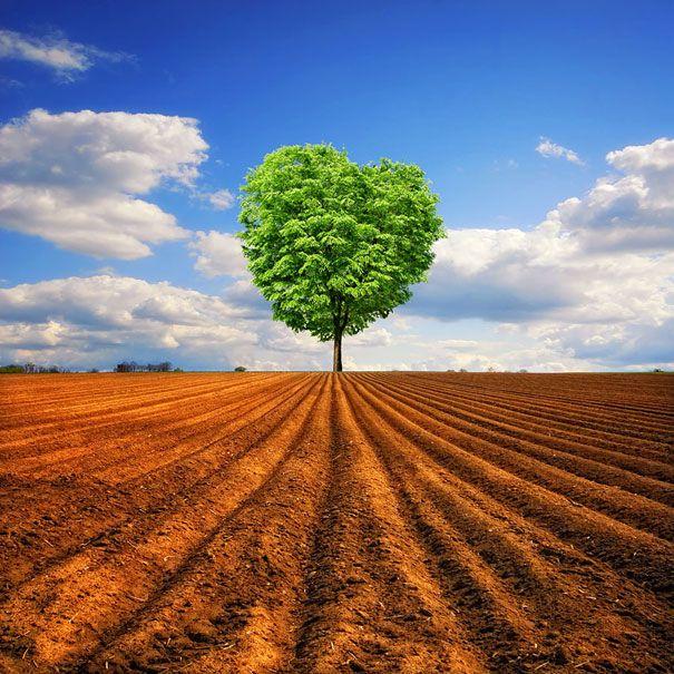 【まるで絵画】死ぬまでに一度は撮ってみたい!?息を呑むほど美しい風景写真40連発 | IRORIO(イロリオ) - 海外ニュース・国内ニュースで井戸端会議