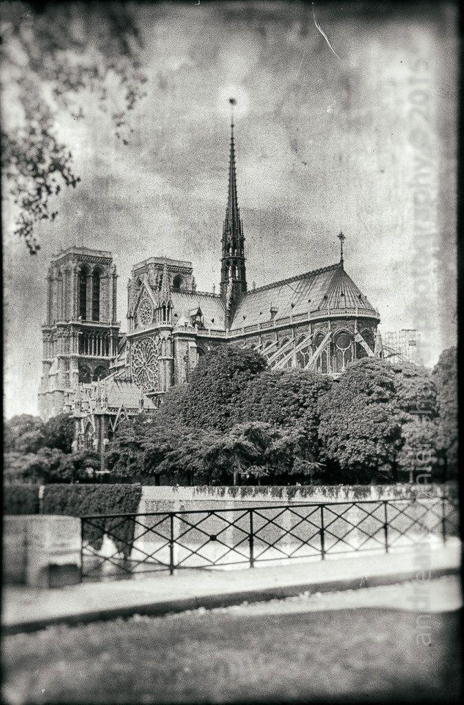 https://flic.kr/p/vFqCMd   Cathédrale Notre Dame de Paris   Photograph © Andreas Schniertshauer, Cathédrale Notre Dame de Paris; From the series: yesteryear, Paris, FRA.