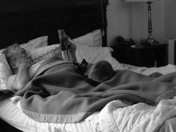 Meu pai, Antonio Ignácio Alvarez Jimenez e meu gato, Flicts, em um fim de semana preguiçoso.