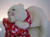 Sleeping Ted, Valentines - Super Floral Distributors - Decor, Floral accessories and Crafters accessories in Cape Town
