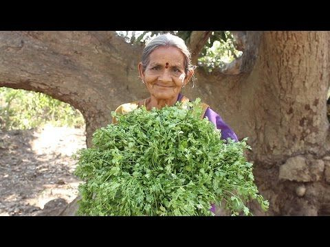 Coriander leaves Pickle Recipe by my Grandma || Myna Street Food || Food info - YouTube