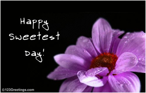 Download these Funny Happy Sweetest Day Quotes 2014 Happy Sweetest Day for free send these Funny Happy Sweetest Day Quotes 2014 or Happy Sweetest Day pictures