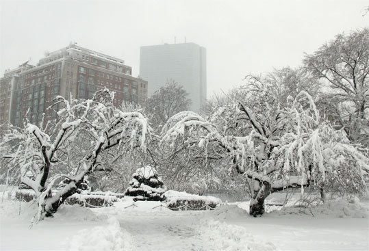 #Fun #Boston 25 Things to do in Boston for Under $25 this Winter! Perfect for any college girl on a budget!