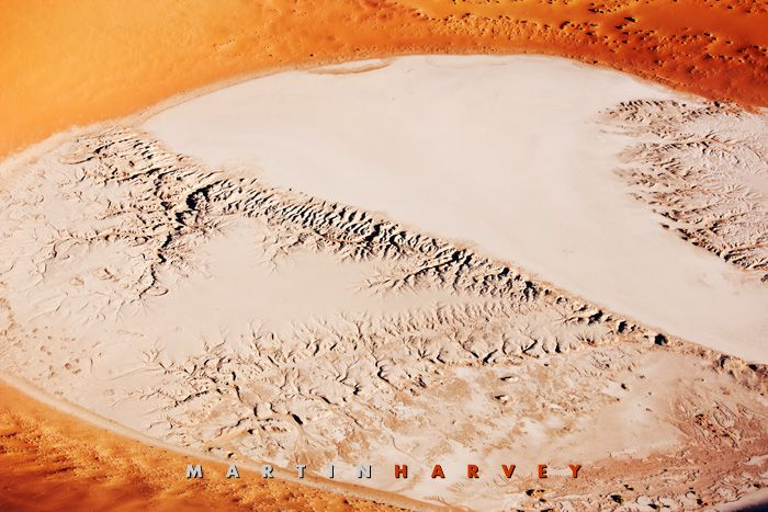 A small hidden vlei in the Namib desert