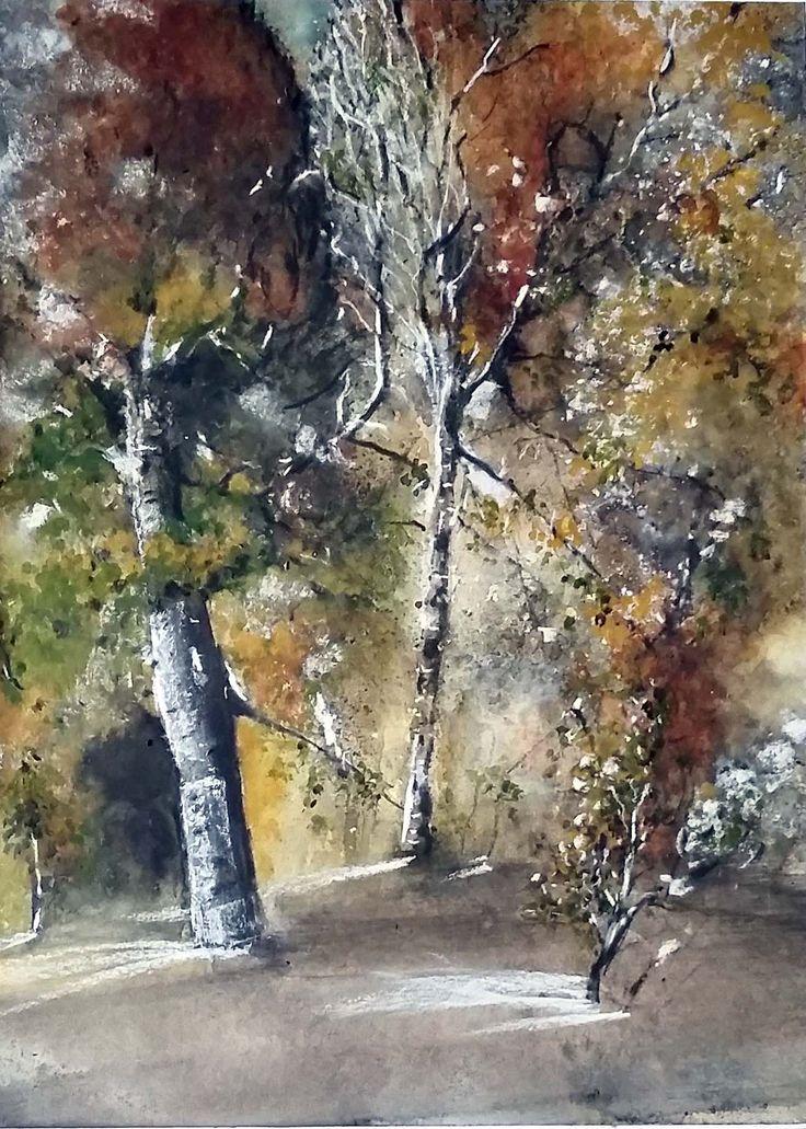 Bosco piemontese in autunno   -  Acquerello 30x40cm    -   SOLD