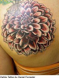 Dahlia Tattoo