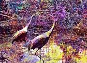 "New artwork for sale! - "" Punta Gorda Florida Red Heron  by PixBreak Art "" - http://ift.tt/2u2IVs4"
