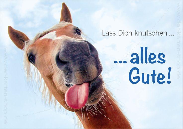 """Postkarte, Tierpostkarte Geburtstagskarte Pferd """"Lass Dich knutschen, alles Gute!"""""""