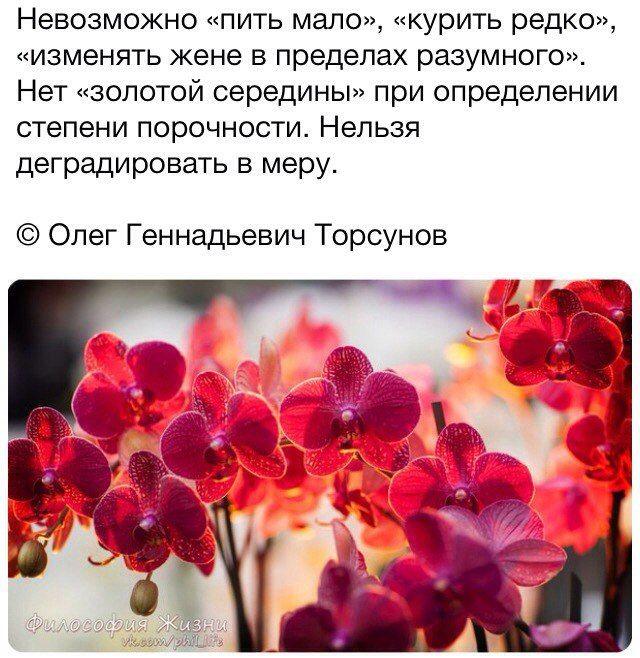 Анна Яцышина