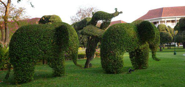 Elephants in topiary garden at Sofitel Hotel, Hua Hin, Thailand   Photos © Thaizer