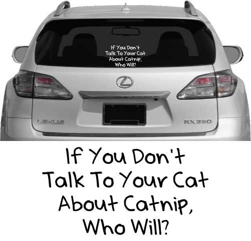 Best Car Window Decals Images On Pinterest Car Window Decals - Window decals for cars and trucksbest gambler images on pinterest hello kitty vinyl decals