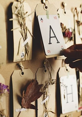 Be inspired by The Herbarium Project theherbariumproject.com and make your own floral Advent calendar from pressed flowers and foliage. Photo by Andrew Montgomery.